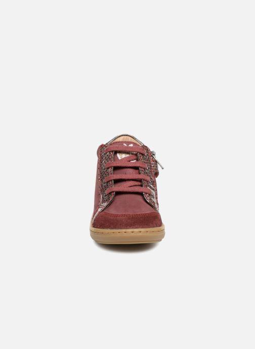Baskets Shoo Pom Bouba Zip Box Bordeaux vue portées chaussures