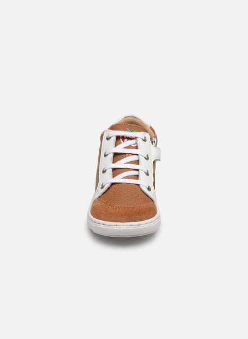 Baskets Shoo Pom Bouba Zip Box Marron vue portées chaussures