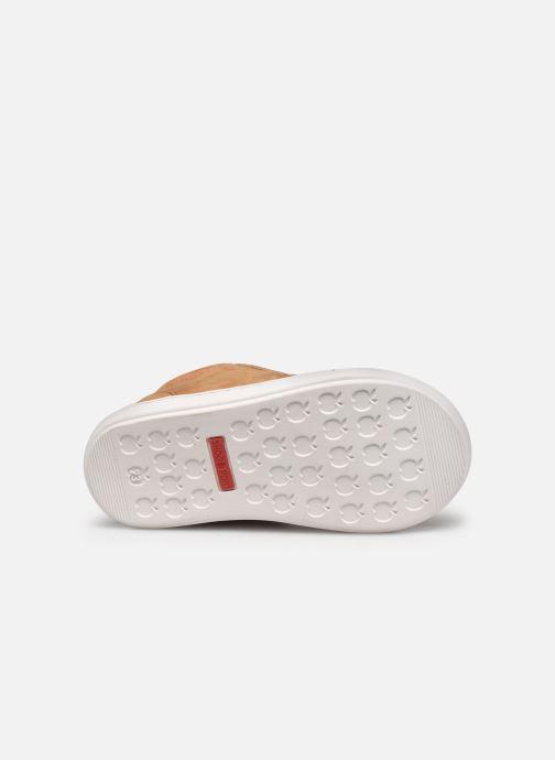 Sneaker Shoo Pom Bouba Zip Box braun ansicht von oben