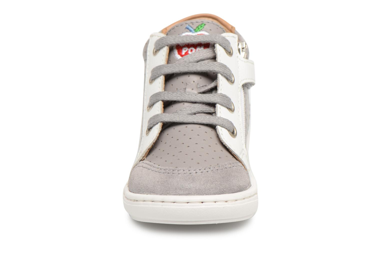 Sneakers Shoo Pom Bouba Zip Box Grijs model