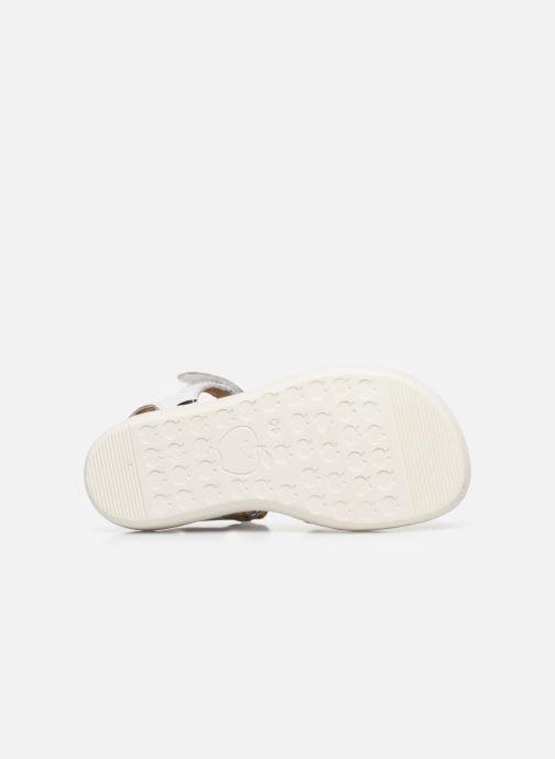 Sandali e scarpe aperte Shoo Pom Goa Sandal Girl Bianco immagine dall'alto
