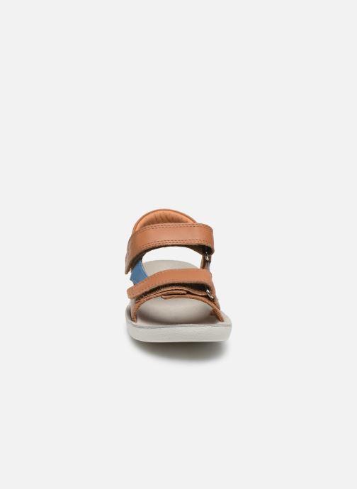 Sandales et nu-pieds Shoo Pom Goa Boy Scratch Marron vue portées chaussures