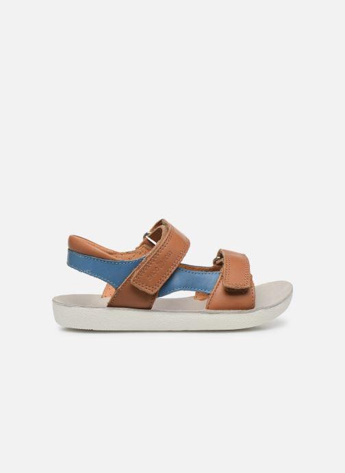 Sandales et nu-pieds Shoo Pom Goa Boy Scratch Marron vue derrière