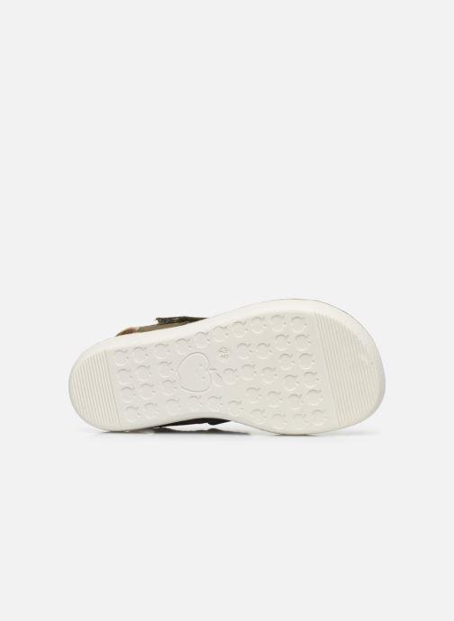 Sandales et nu-pieds Shoo Pom Goa Boy Scratch Vert vue haut