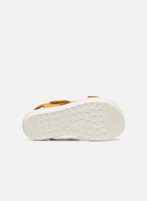 Sandales et nu-pieds Shoo Pom Goa Boy Scratch Jaune vue haut