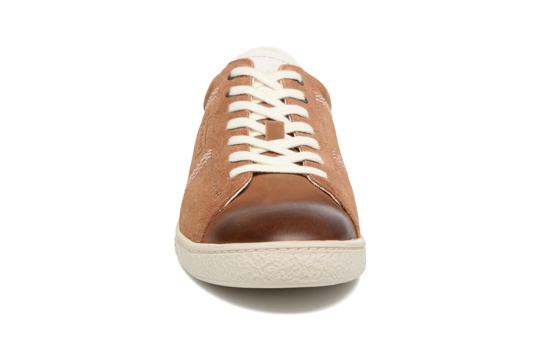Sneakers Kickers San Jose Bruin model