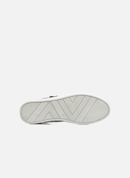 Sneakers Tom Tailor Coolioo Blauw boven