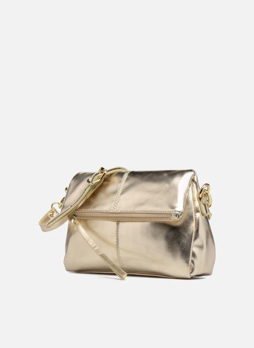 Handbags Mellow Yellow BUTIN Bronze and Gold model view