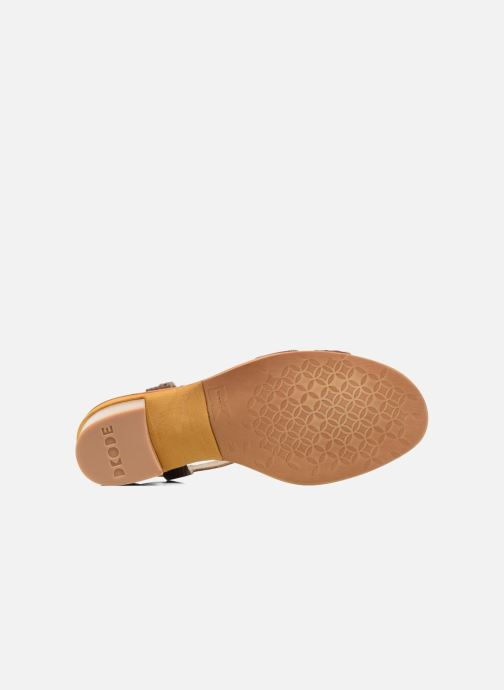 Sandals Dkode Grazia Brown view from above