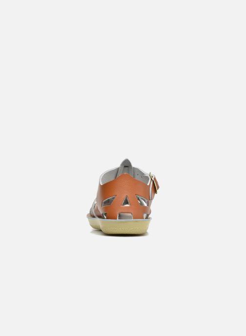 Sandales et nu-pieds Salt-Water Shark Marron vue droite