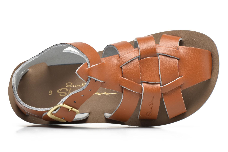 Sandales et nu-pieds Salt-Water Shark Marron vue gauche