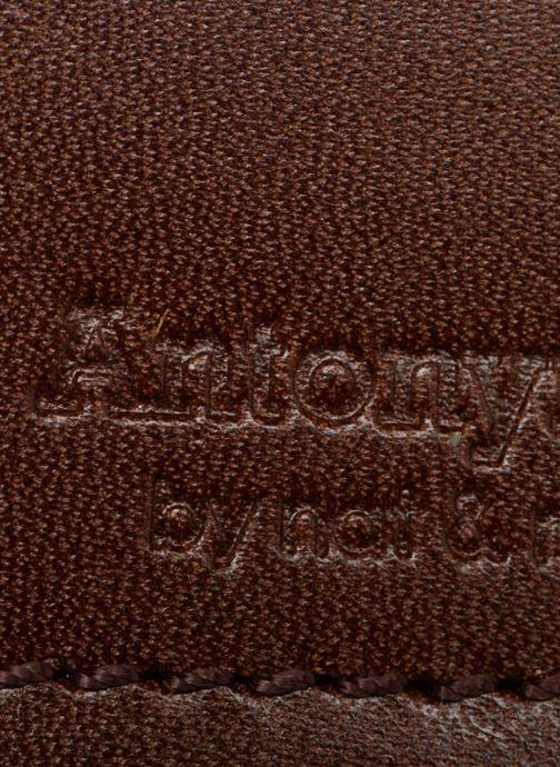 Marroquinería pequeña Antonyme by Nat & Nin Viktor Marrón vista lateral izquierda