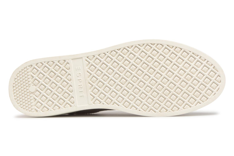 Sneaker Esprit Sidney Lace Up beige ansicht von oben
