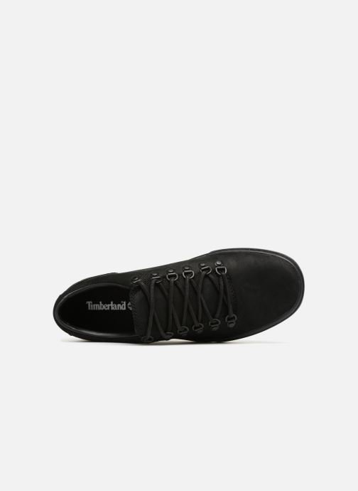 Sneakers Timberland Adv 2.0 Cupsole Alpine Ox Zwart links