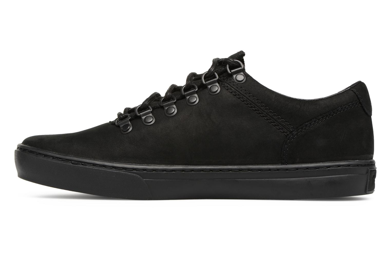 Sneaker Timberland Adv 2.0 Cupsole Alpine Ox schwarz ansicht von vorne