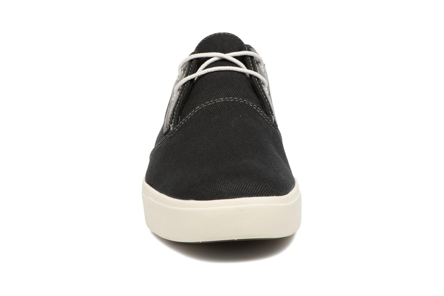 Trainers Timberland Amherst Canvas PTO Black model view