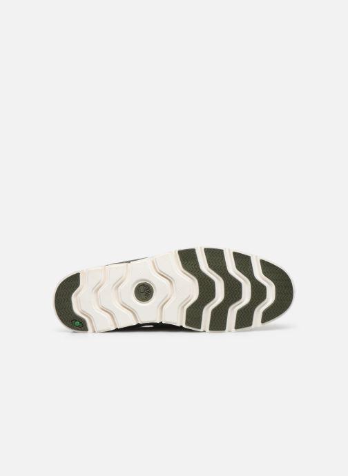 Chaussures à lacets Timberland Tidelands 2 Eye Vert vue haut