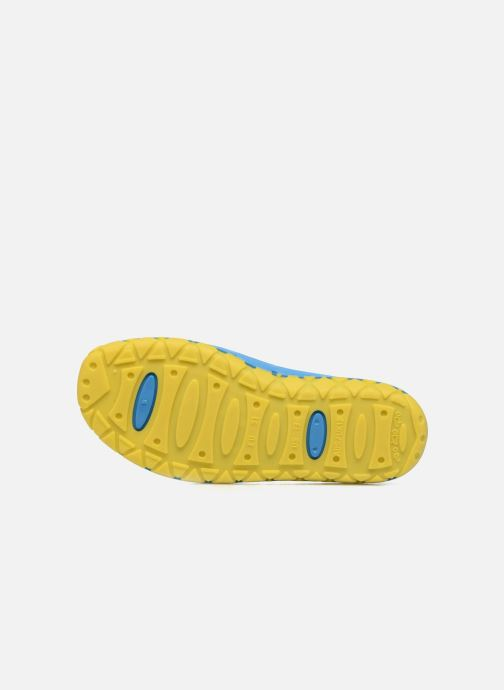 Sandali e scarpe aperte SARENZA POP Raffi Azzurro immagine dall'alto