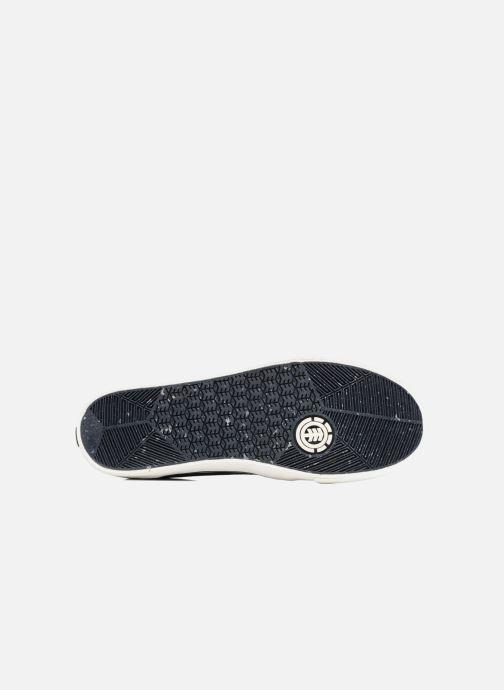 Sneakers Element Darwin Blauw boven