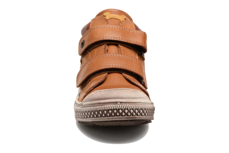 Sneakers Stones and Bones Lifo Brun se skoene på