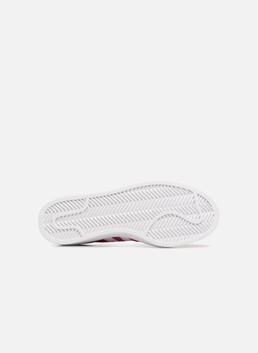Trainers Adidas Originals Campus J Pink view from above