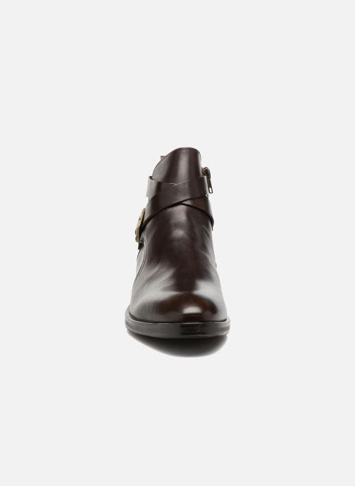 Bottines et boots Marvin&Co Teddy Marron vue portées chaussures