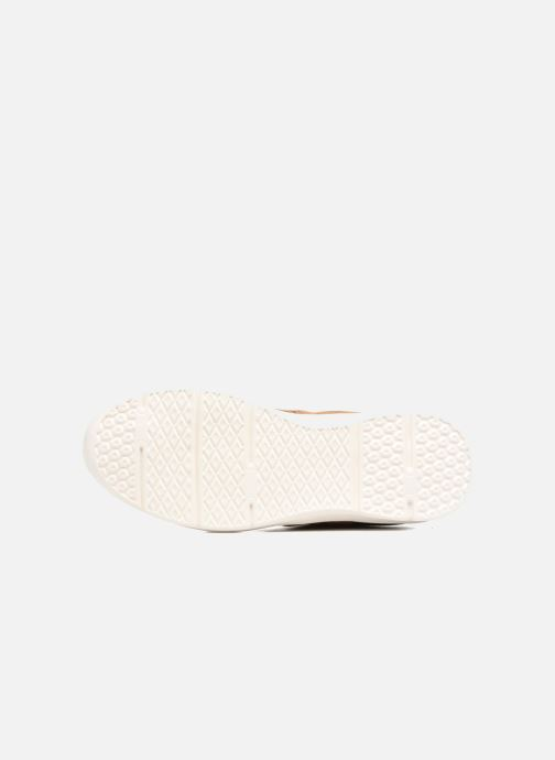 Sneakers Pepe jeans JAYDEN SUEDE Marrone immagine dall'alto