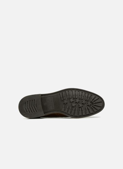 Lace-up shoes Schmoove Woman Newton Perfo Brown view from above