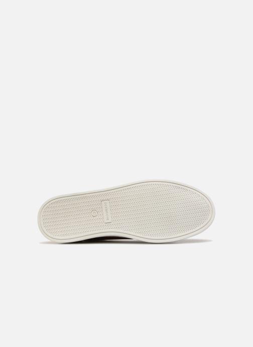 Sneakers Schmoove Spark Mid Marrone immagine dall'alto