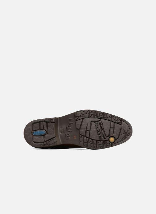 Zapatos con cordones Fluchos Cavalier 9527 Marrón vista de arriba