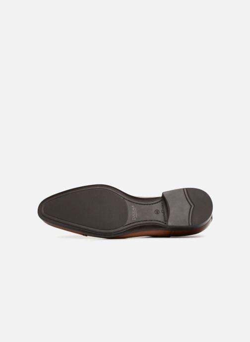 Zapatos con cordones Doucal's Oscar Marrón vista de arriba