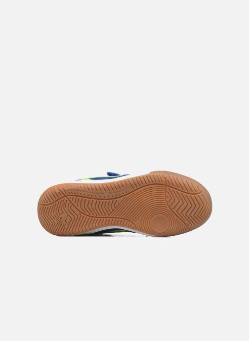 Baskets Kangaroos Power Comb V Bleu vue haut
