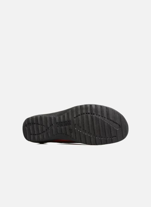 Zapatos con cordones Josef Seibel Naly 11 Rojo vista de arriba