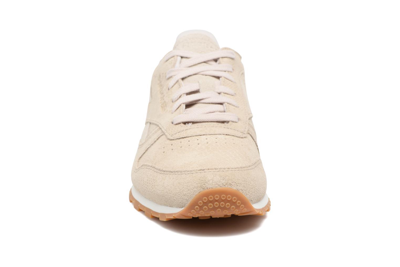 Baskets Reebok Cl Lthr Clean Exoti Gris vue portées chaussures