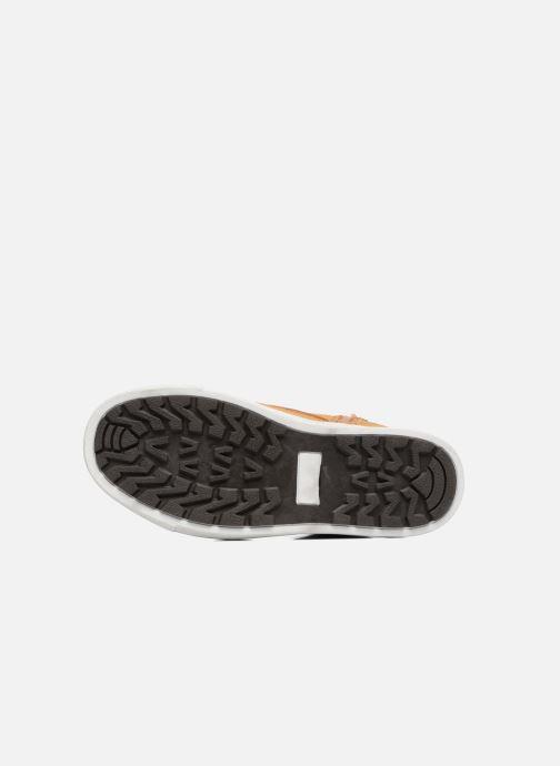 Sneakers Canguro C57404 Marrone immagine dall'alto