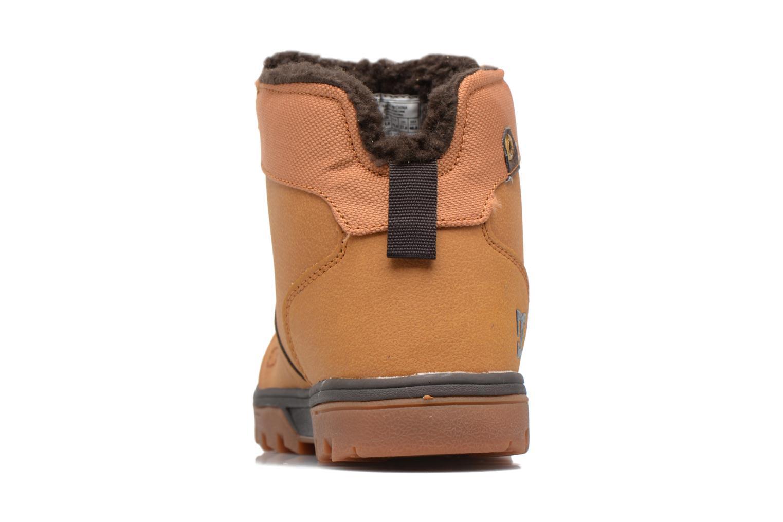 Chaussures à lacets DC Shoes Woodland Marron vue droite