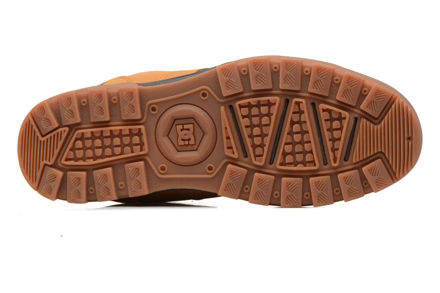 Lace-up shoes DC Shoes Woodland Brown view from above
