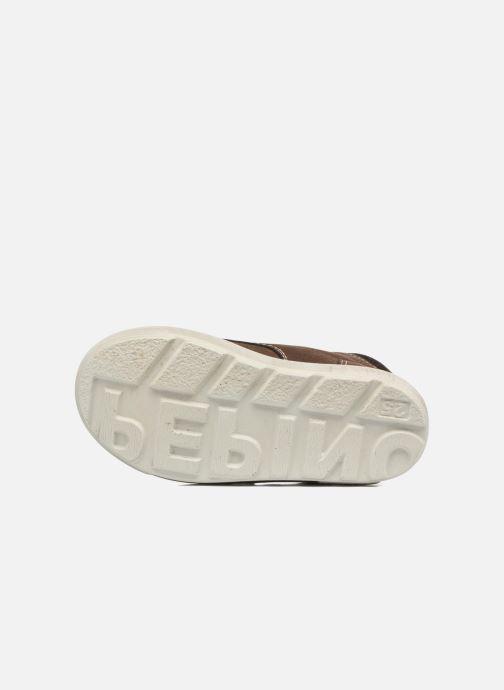 Stiefeletten & Boots Pepino Alex-dry braun ansicht von oben