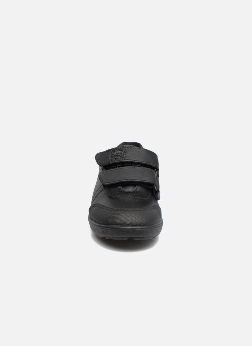 Zapatos con velcro Gioseppo NEWTON Negro vista del modelo