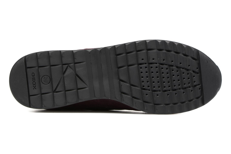 Sneakers Geox D Deynna E D746FE Paars boven