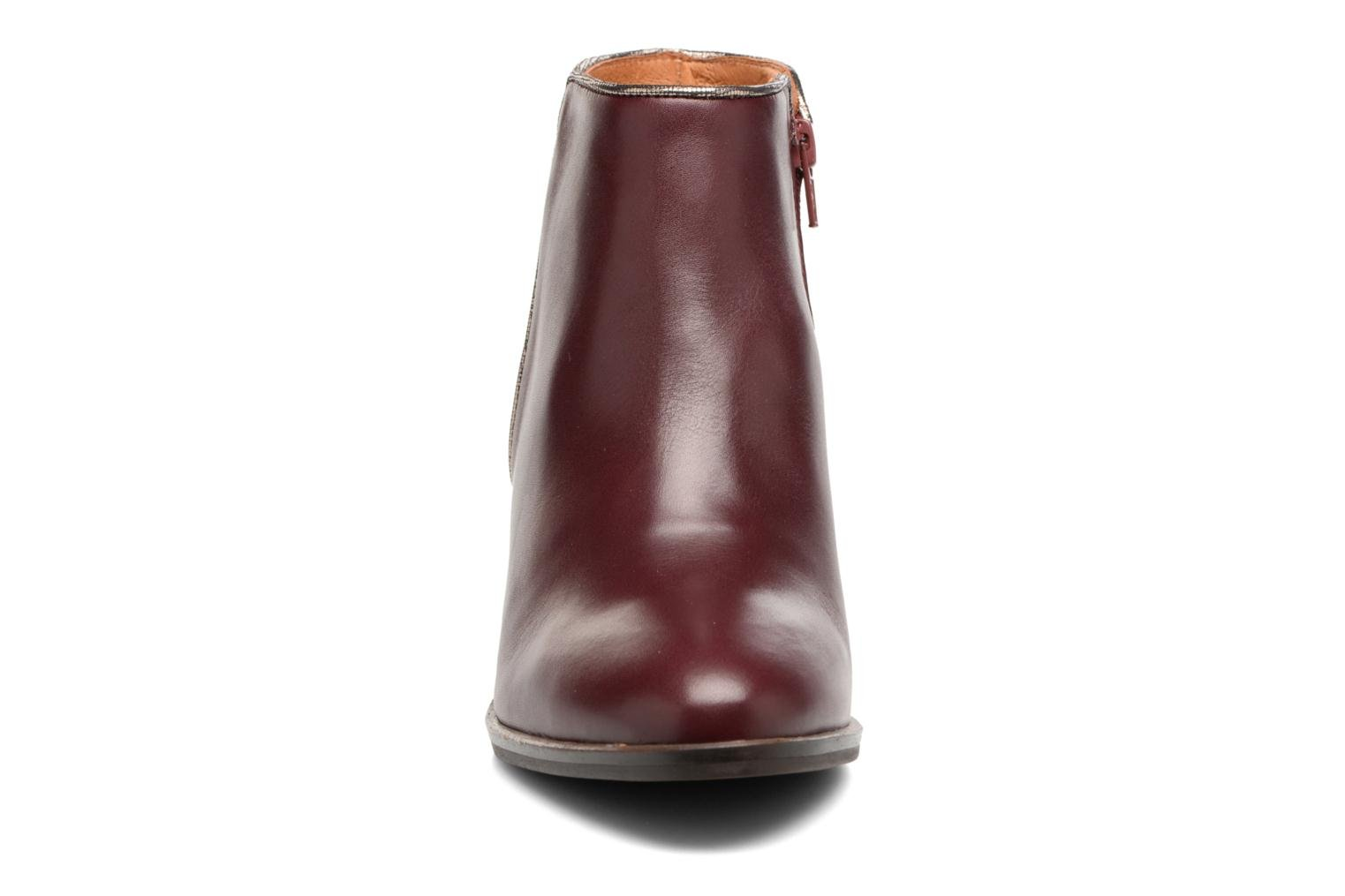 Ankle boots Georgia Rose Catalon Burgundy model view