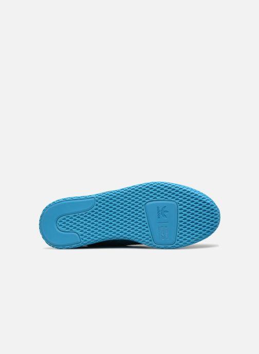 Sneaker adidas originals Pharrell Williams Tennis Hu blau ansicht von oben