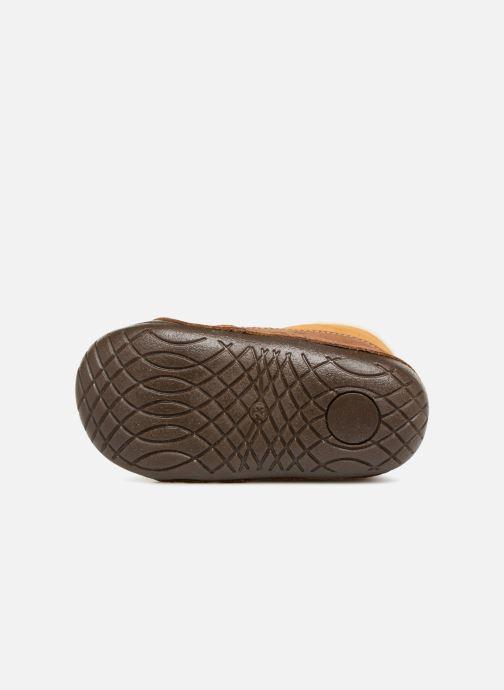 Stiefeletten & Boots Primigi Vitale braun ansicht von oben