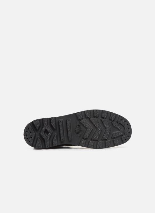 Sneaker Palladium Pampa Hi Originale TC schwarz ansicht von oben