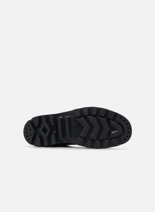 Sneaker Palladium Pampa Fest Pack schwarz ansicht von oben