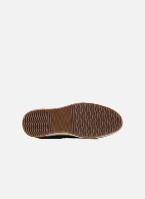 Sneaker P-L-D-M By Palladium Falcon Slk schwarz ansicht von oben