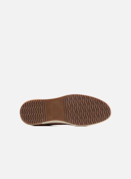 Sneaker P-L-D-M By Palladium Falcon Mix braun ansicht von oben