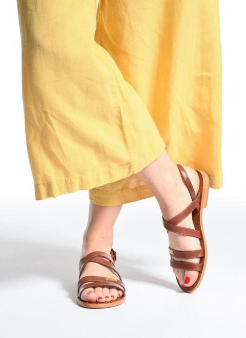 Sandali e scarpe aperte Les Tropéziennes par M Belarbi Helios Marrone immagine dal basso
