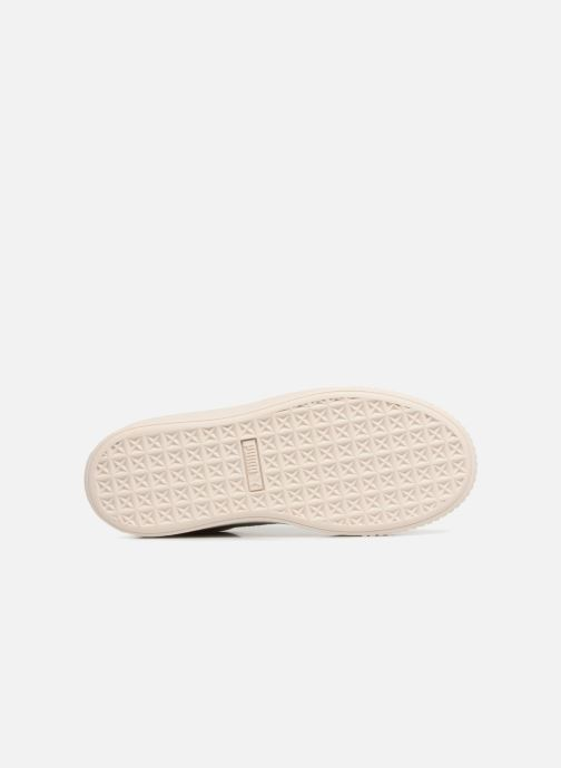 Sneaker Puma PS Suede Platform Glam/Jr Suede Platform Glam grau ansicht von oben