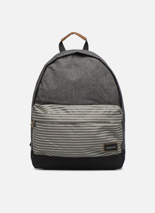 Rucksacks Quiksilver Everyday Poster Plus Grey detailed view/ Pair view